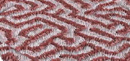 Seeking answers in ferroelectric patterning