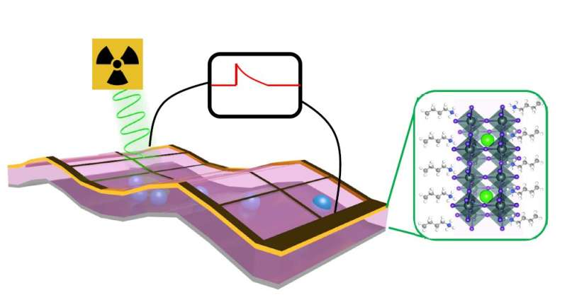 Self-powered X-ray detector to revolutionize imaging for medicine, security and research