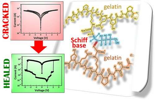Self-repairing gelatin-based film could be a smart move for electronics