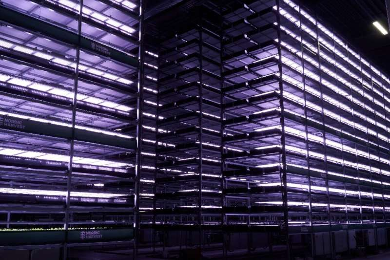 Shelves of the vertical plant farm 'Nordic Harvest' where lettuce, herbs and kale will soon be growing