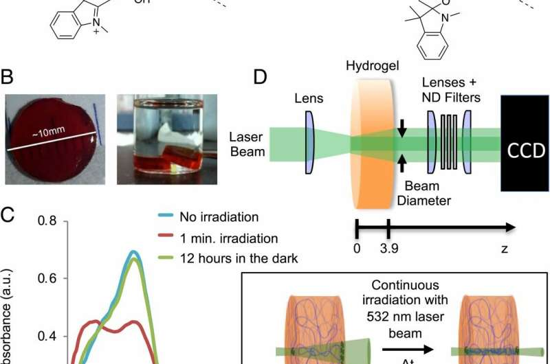 Shining a New Light on Biomimetic Materials