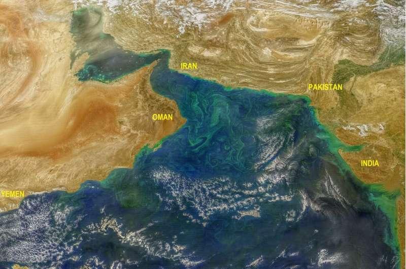 Shrinking snowcaps fuel harmful algal blooms in Arabian sea