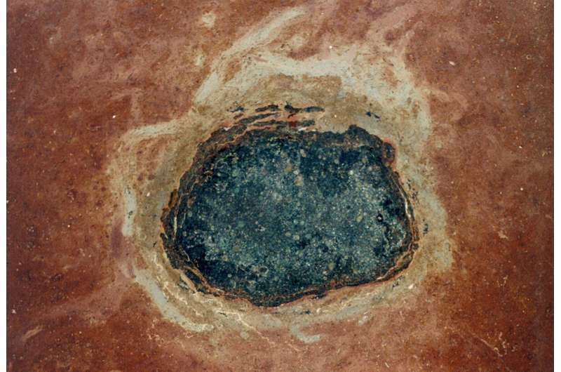 Space dust fossils are providing a new window onto Earth's past