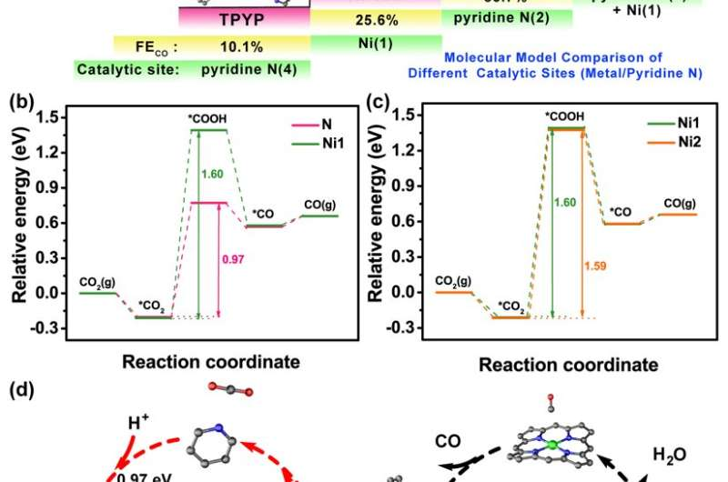 Stable supramolecular structure system to identify activity origin of CO2 electroreduction