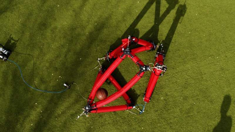 Stanford engineers create shape-changing, free-roaming soft robot