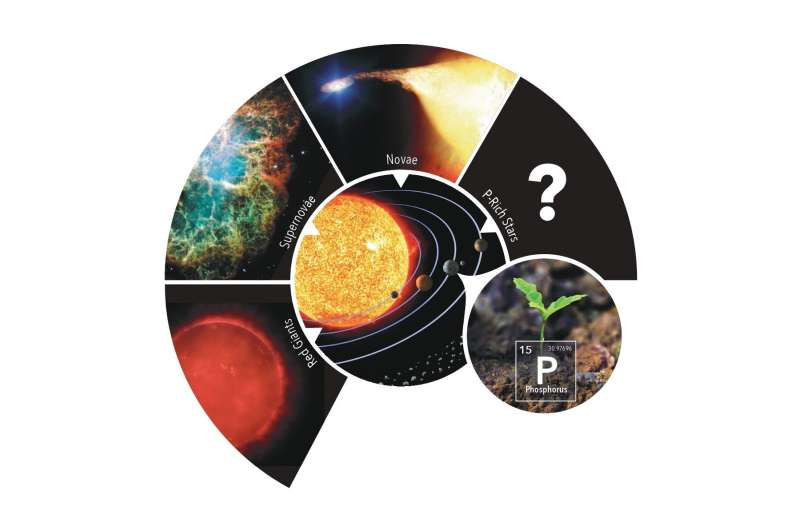 Stars rich in phosphorus: Seeds of life in the universe