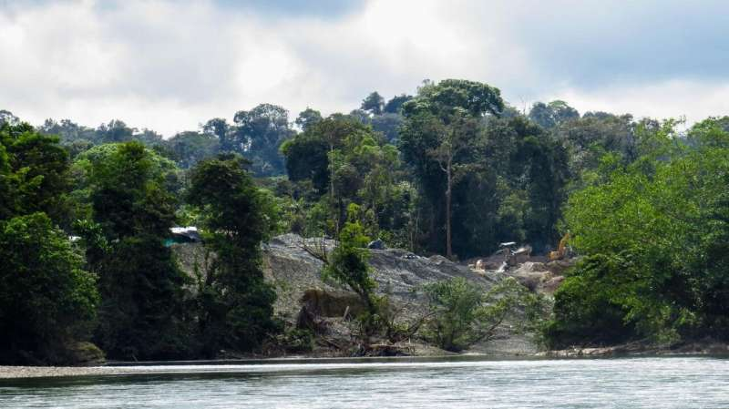 Stopping deforestation: lessons from Colombia