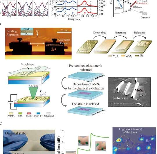 Strain engineering of 2D semiconductor and graphene