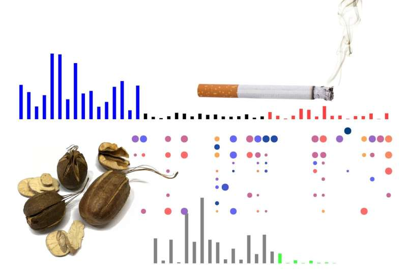 Study catalogues cancer 'fingerprints' in decade-long global effort to map cancer genomes