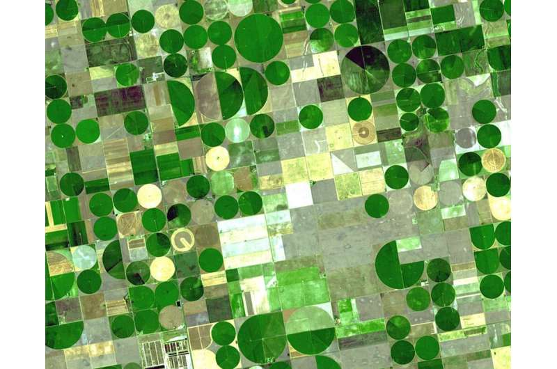 Study details effectiveness of Kansas program that pays farmers to conserve water