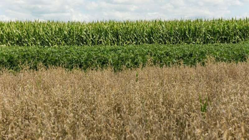 Study seeks to increase adoption of soil conservation practices