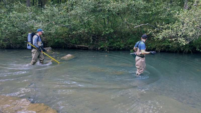 Study will help fisheries management of a popular game fish — the smallmouth bass.