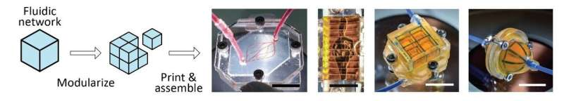 SUTD's novel approach allows 3D printing of finer, more complex microfluidic networks