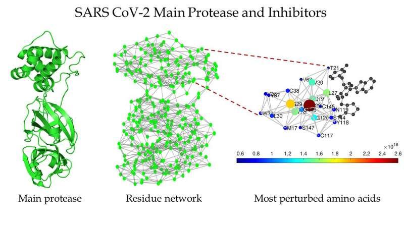 Targeting SARS-CoV-2 enzyme with inhibitors