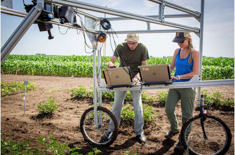 Technology to screen for higher-yielding crop traits is now more accessible to scientists