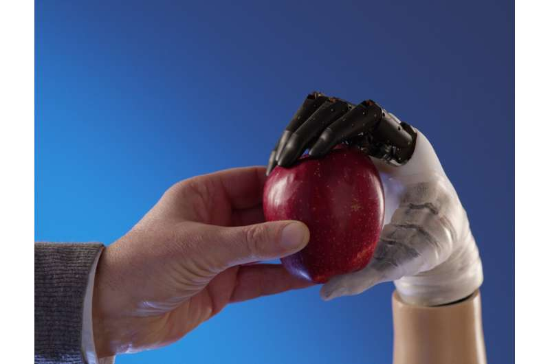 The biomimetic hand prosthesis Hannes uniquely similar to a human hand