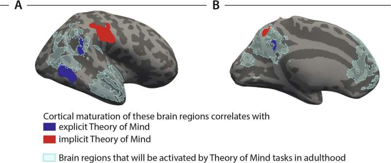 The brain has two systems for thinking about others' thoughts