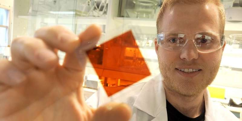 The most beautiful solar cells are inspired by nature