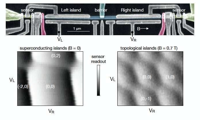 The observation of photon-assisted tunneling signatures in Majorana wires