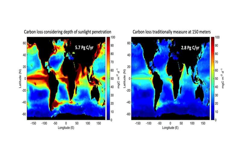 The ocean's 'biological pump' captures more carbon than expected