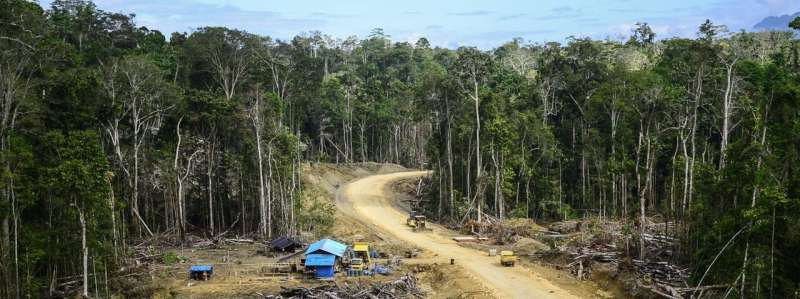 The relationships between forests, deforestation and infectious disease emergence