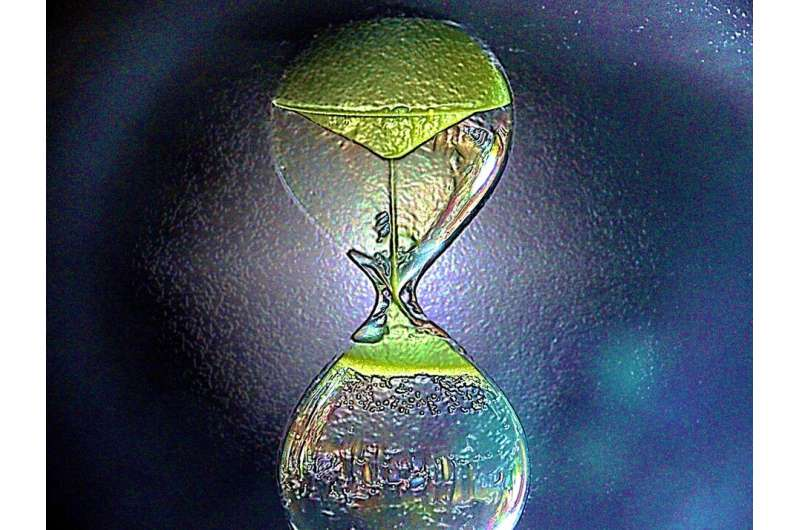 Time-reversal of an unknown quantum state