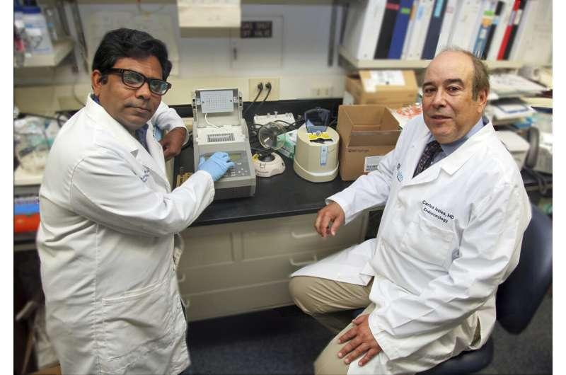 Tiny RNA that should attack coronavirus diminish with age, disease
