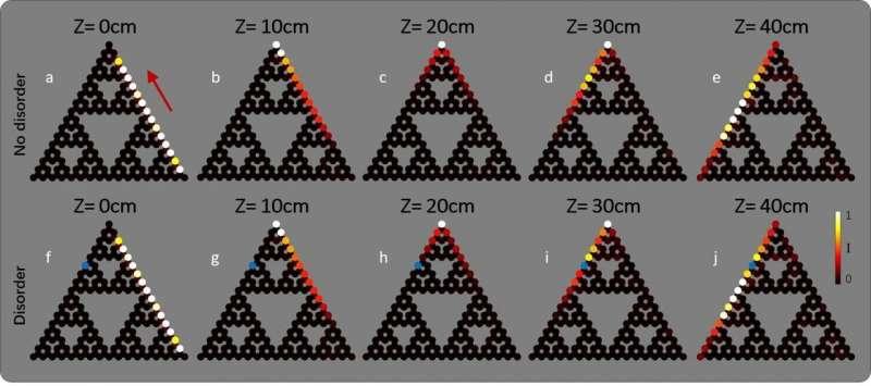 Topological photonics in fractal lattices