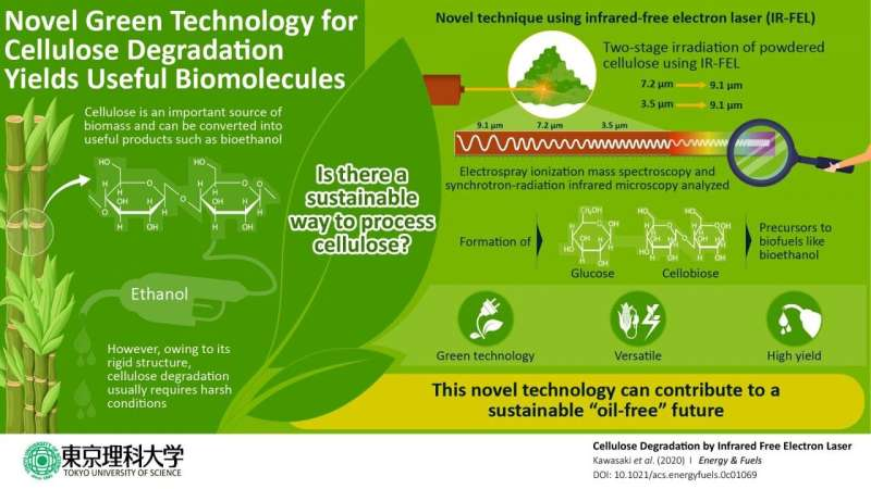 Towards a green future: Efficient laser technique can convert cellulose into biofuel