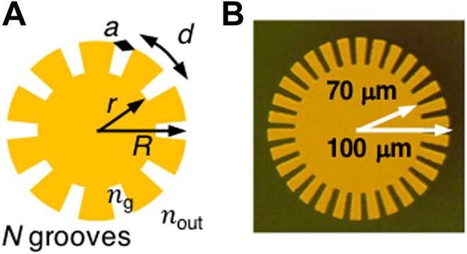 Transferring orbital angular momentum of light to plasmonic excitations in metamaterials