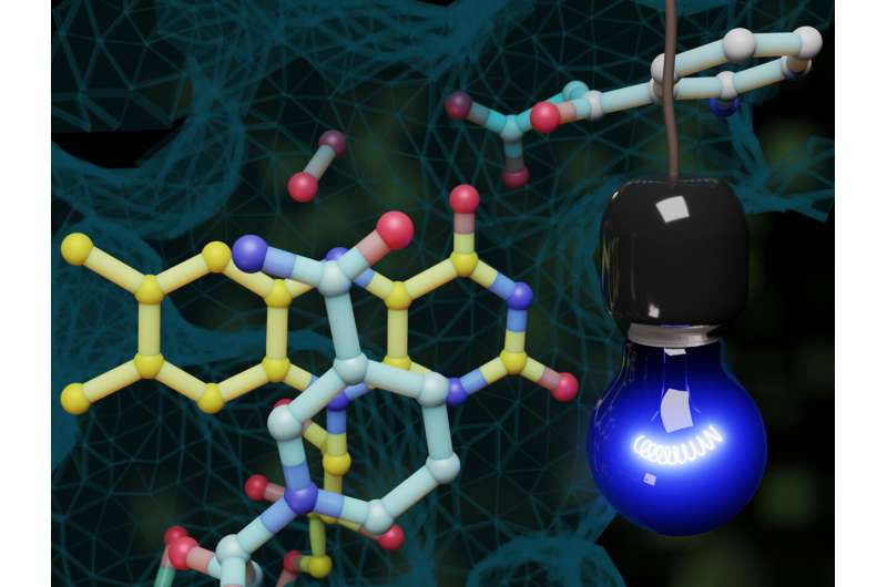 Triggered by light, a novel way to switch on an enzyme