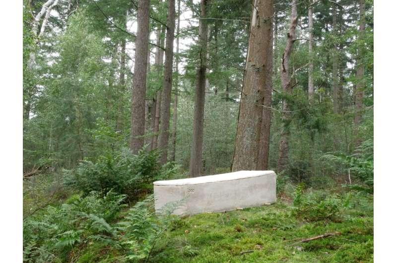 TU Delft start-up develops 'living coffin'