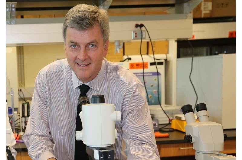 UCF scientists seek novel material to kill COVID-19