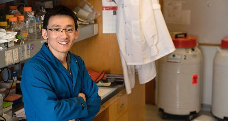 UCLA researchers find chronic inflammation contributes to cancer metastasis