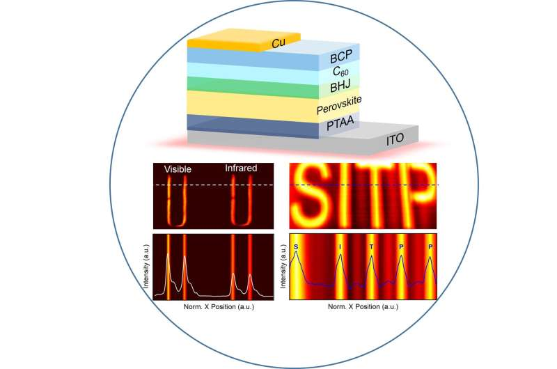 Ultrafast and broadband perovskite photodetectors for large-dynamic-range imaging
