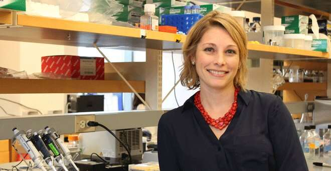 UMMS scientist shows gene therapy protection of eyesight in models of multiple sclerosis