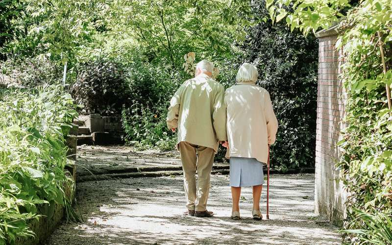 Uncovering potential pathway to slowing Alzheimer's