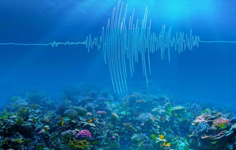 Undersea earthquakes shake up climate science