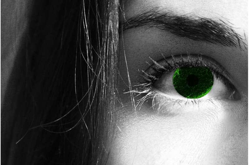 Unique Schwann cells: The eyes have it