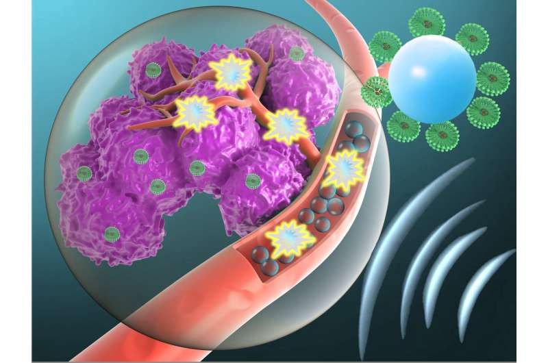 Using targeted microbubbles to administer toxic cancer drugs