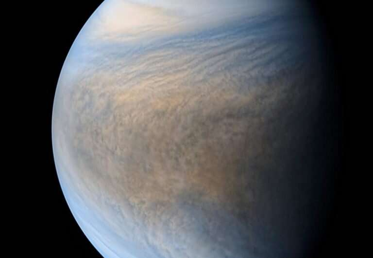 Venus might be habitable today, if not for Jupiter