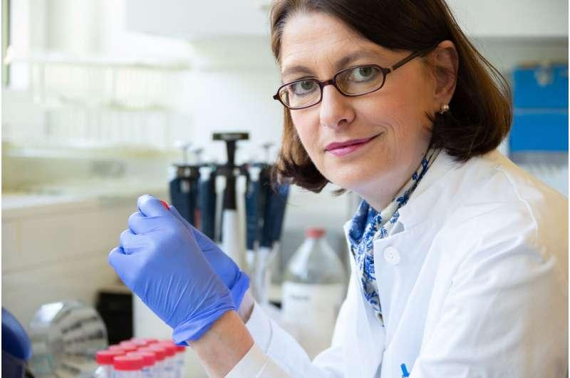 Virologists show that sample pooling can massively increase coronavirus testing capacity