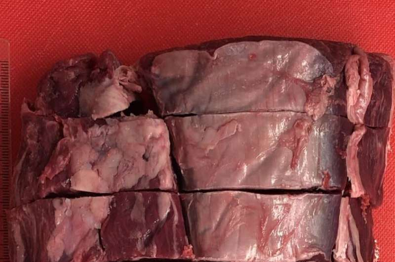 Wagyu beef passes the taste test of science