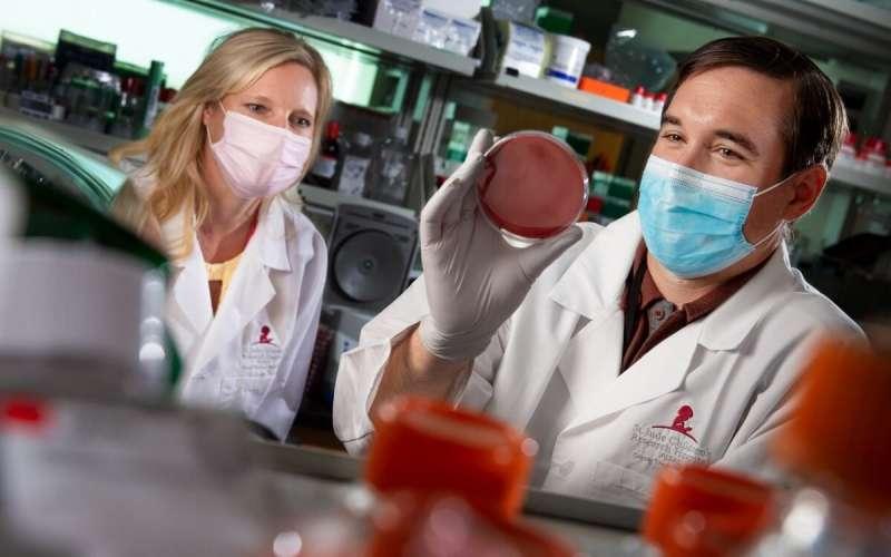 Want to block flu transmission? Targeting nasal bacteria may help