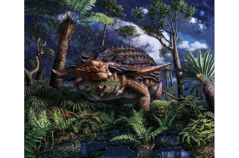 Western Canadian scientists discover what an armoured dinosaur ate for its last meal