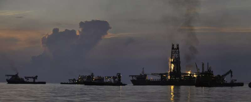 What did scientists learn from Deepwater Horizon?