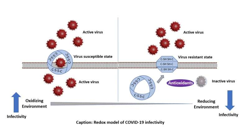 What makes certain groups more vulnerable to COVID-19?