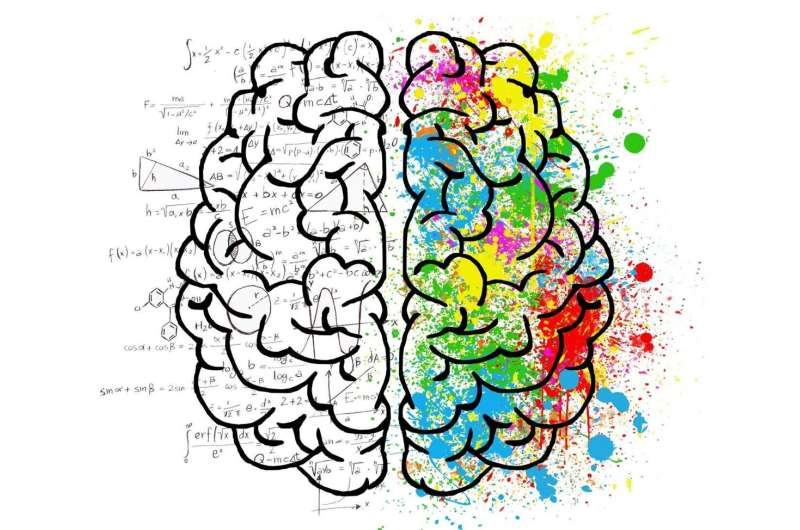 Which is more creative, the arts or the sciences?