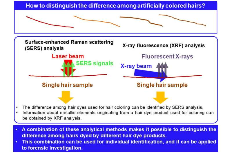 Within a hair's breadth--forensic identification of single dyed hair strand now possible