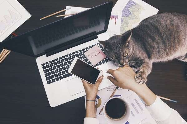 With management resistance overcome, working from home may be here to stay